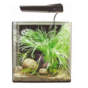 Aqua One Aqua Nano 40 - Complete Aquarium Set