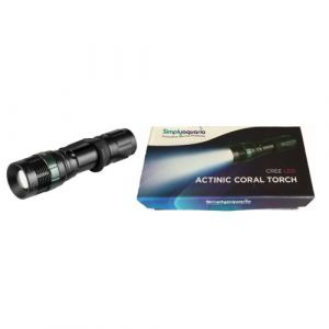 Actinic Coral Torch