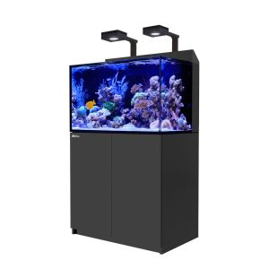 Red Sea Max E260 with 2x ReefLED 90 Lighting