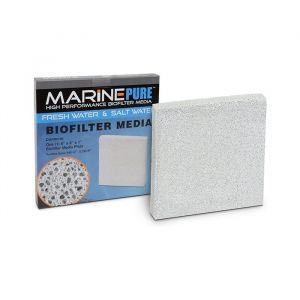 Marine Pure Plate