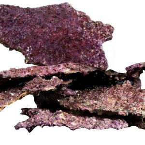 Real Reef Rock Plate 1kg