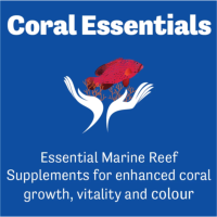 Coral Essentials